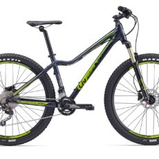 Liv MTB Tempt 2 LTD 2018
