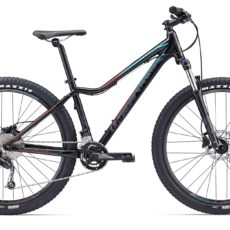 Liv MTB Tempt 3 LTD 2018