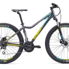 Liv MTB Tempt 4 LTD 2018