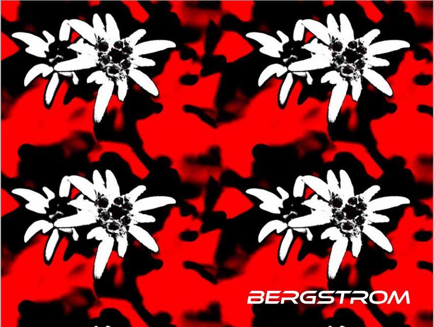 Bild Bergstrom Katalog